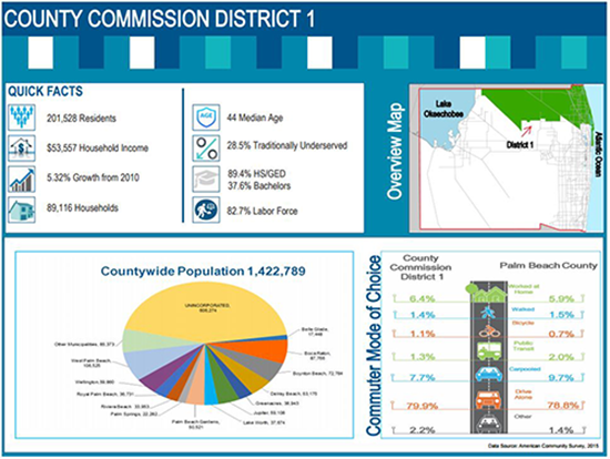 Sample page from the community profile for County Commission District 1